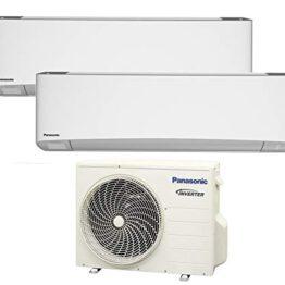 Panasonic Etherea duo